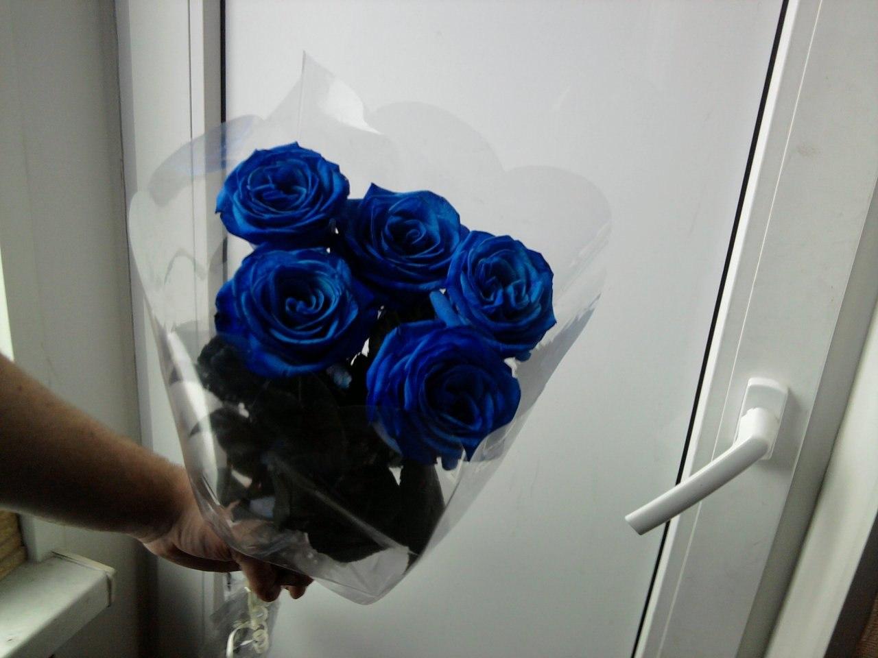 Фото девушки с синей розой
