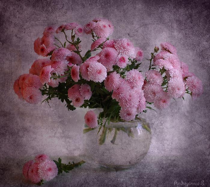 http://s4.hostingkartinok.com/uploads/images/2012/10/cc06f6baaffa3fce17f46493f33dbbba.jpg