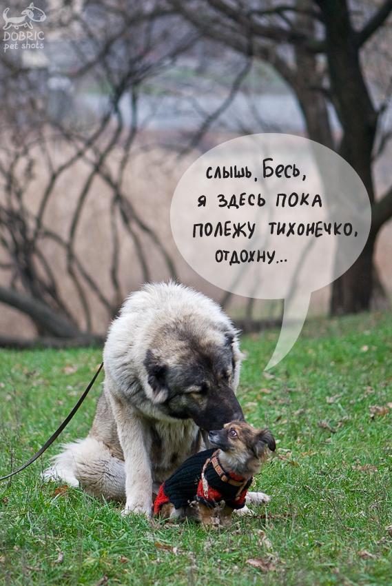 http://s4.hostingkartinok.com/uploads/images/2012/12/5e967aee6d3ec75d7dab5dd7f5607009.jpg