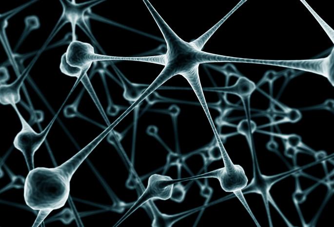 Қазақша Ашық сабақ: Биология | Жүрек - қан тамырлар жүйесінің аурулары және олардын алдын алу