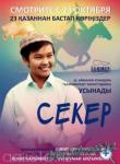 Қазақша Фильм: Секер (2009)