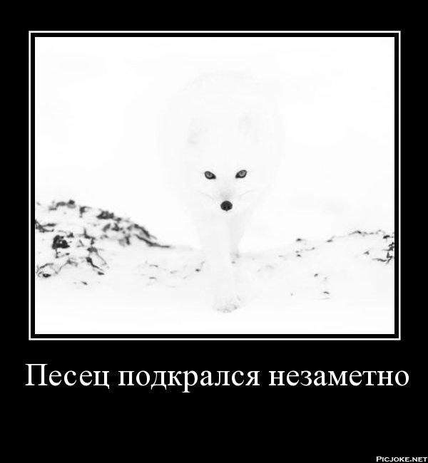 ebun-podkralsya-nezametno-porno-foto-prikoli-mobilnaya-versiya