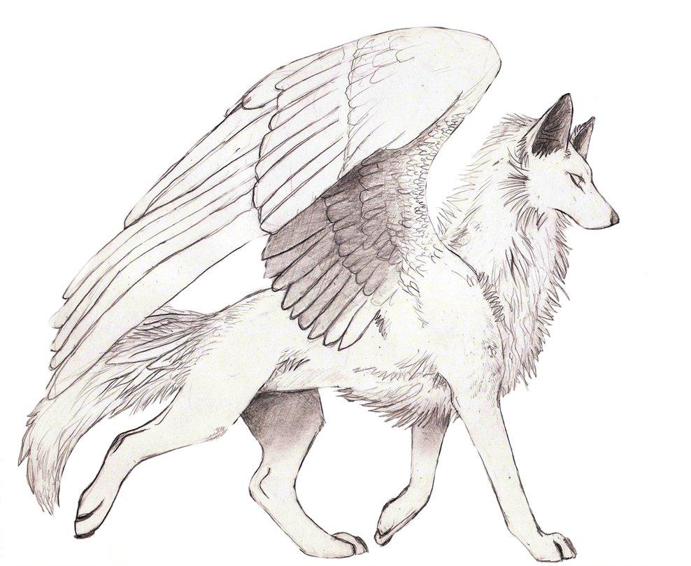 малоэтажные домики, картинки крылатого волка и как нарисовать татуировку